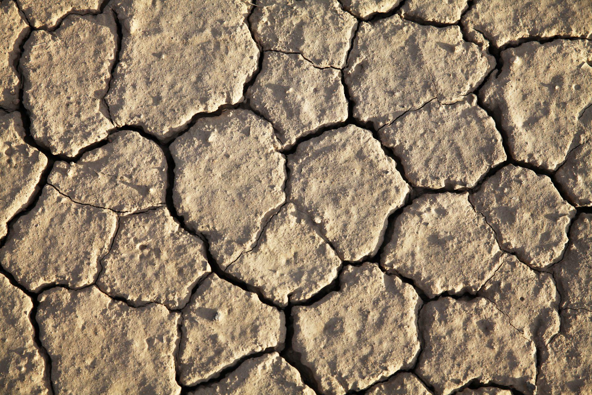 Death Valley_034