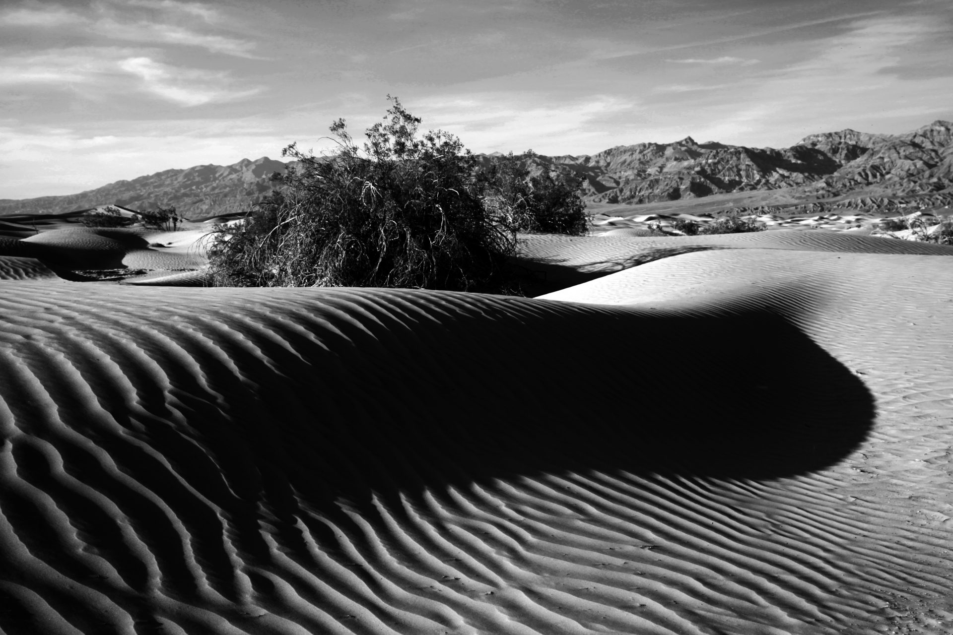Death Valley_106__