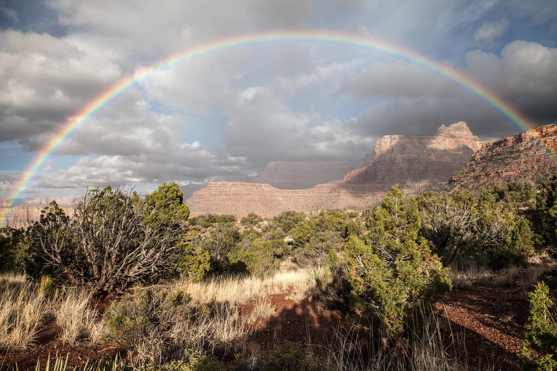 Grand Canyon37