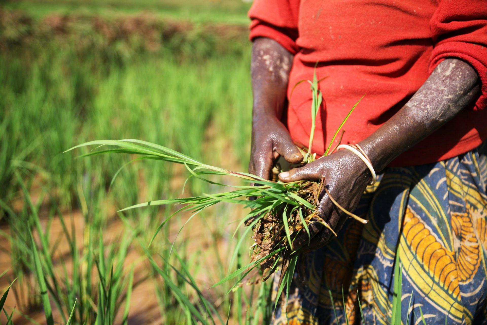 Ruanda.Burundi_039