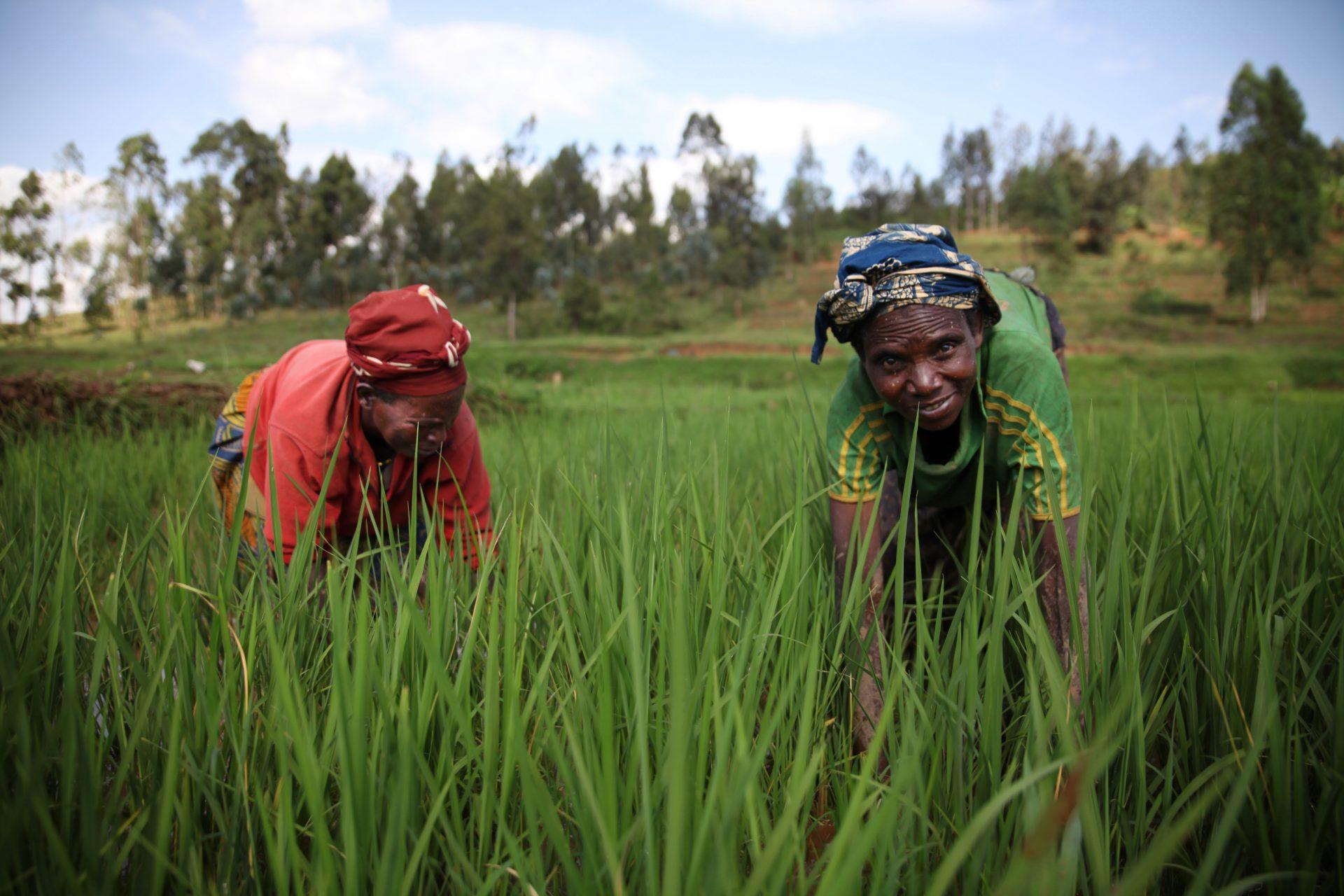 Ruanda.Burundi_040-