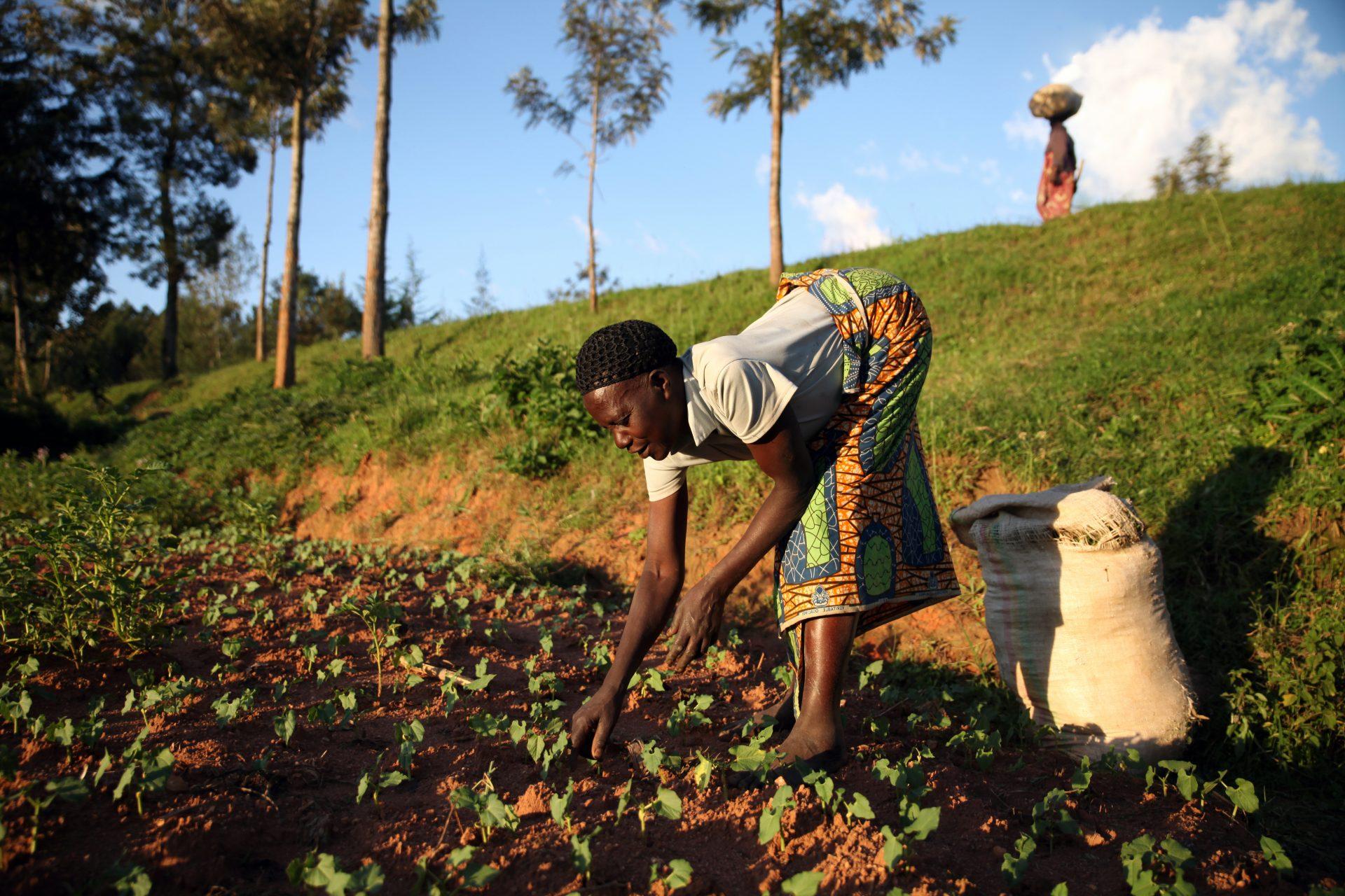 Ruanda.Burundi_67